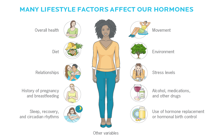Diagram - how we have the power to influence our hormones through our mindset and lifestyle.