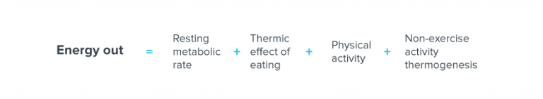 energy out equals resting metabolic rate plus thermic effect of eating plus physical activity plus non exercise activity thermogenesis