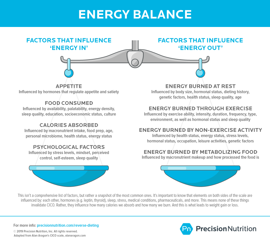 Energy balance scale with factors that influence energy in on the left and factors that influence energy out on the right.