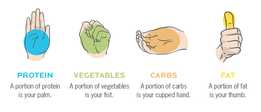 Hand portions to gauge portion sizes of protein, vegetables, carbs, and fat.